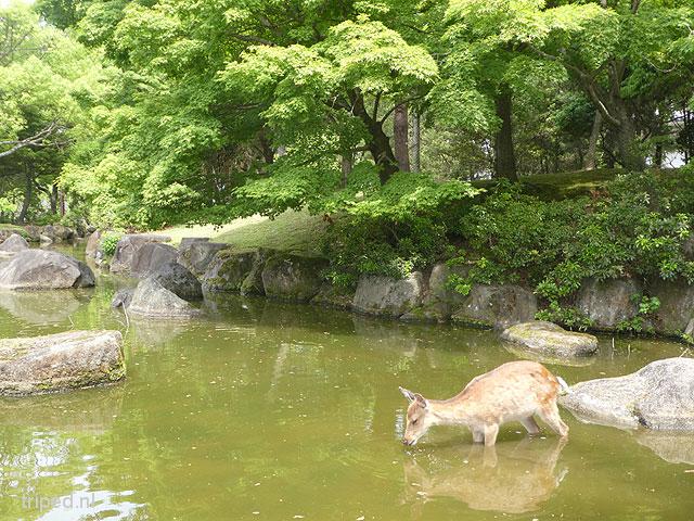 From Tokyo 2 Nagasaki
