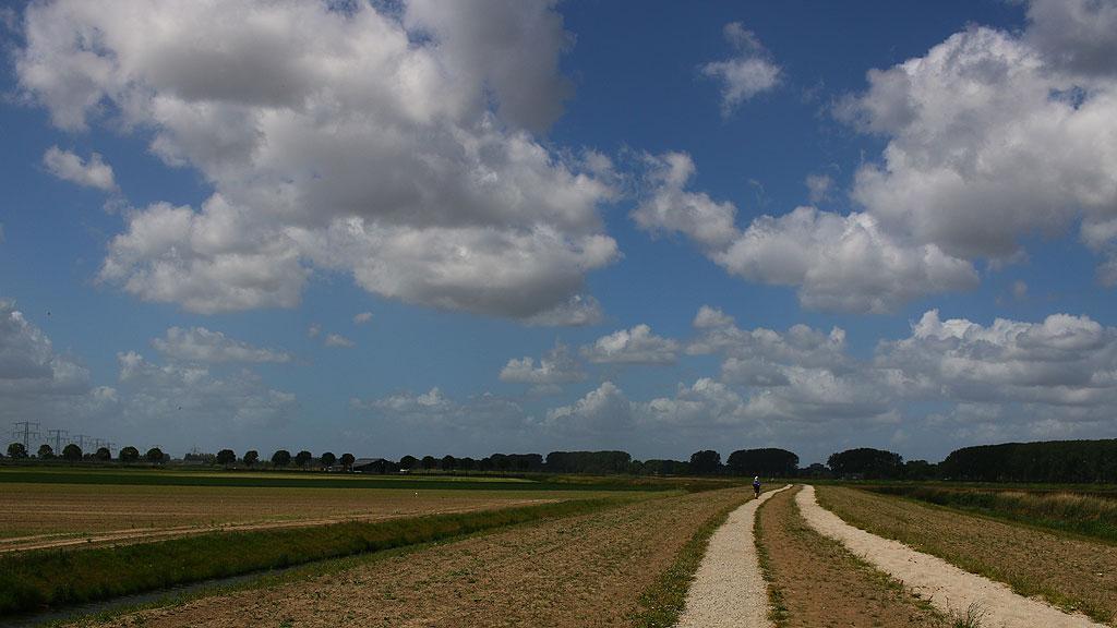 Nieuwe Biesbosch